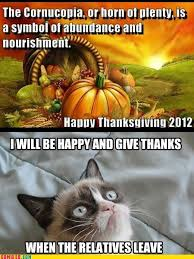 Thanksgiving Cat Meme - it is black friday in my soul grumpy cat meme grumpy cat and meme