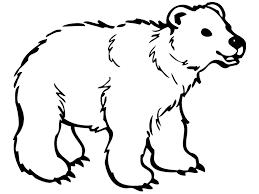 coloring bear animals color children bears rush animal