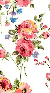 antique rose wallpaper bush in the morning fog vintage full size