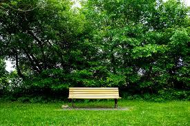 park bench u2013 freemagebank com