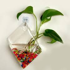 wall glass vase hanging glass terrarium containers water plant