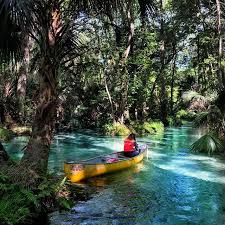 Florida is time travel really possible images 24 awesome hidden florida springs and how to find them jpg