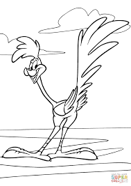 looney tunes road runner coloring page free printable coloring pages