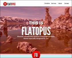 free and premium responsive adobe muse templates web design