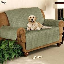 pet chair covers 56 most unbeatable sure fit pet furniture covers for sofas quilted