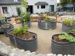 stock tanks used as raised vegetable beds gardening pinterest