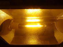 Hps Lights Grow Light Wikipedia
