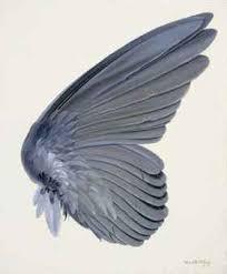 Bird Wing - http christies com lotfinderimages d54096