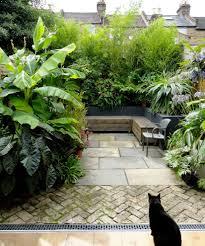 garden paving ideas patio contemporary with tropical urban garden