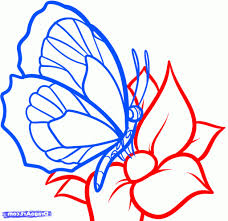 easy butterfly drawing how to draw a butterfly on a flower
