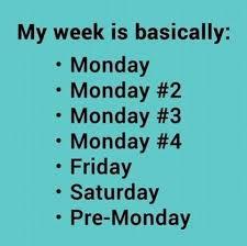 Monday Meme - monday memes my week funny memes