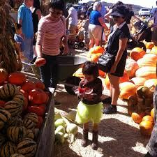 Pumpkin Patch Moorpark by The World U0027s Newest Photos Of Halloween And Ventura Flickr Hive Mind