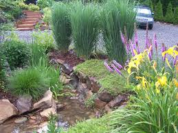 native plants in landscape management top 5 sustainable site planning strategies equinox environmental