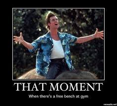 Funny Gym Meme - gym memes health pinterest gym memes funny gym and gym
