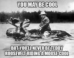 Moose Meme - being teddy roosevelt while riding a moose through a river cool meme