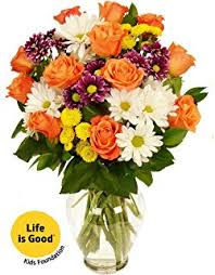 Good Vase Amazon Com Benchmark Bouquets Life Is Good Flowers Pink With