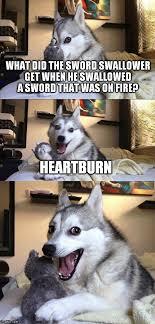 Heartburn Meme - bad pun dog meme imgflip
