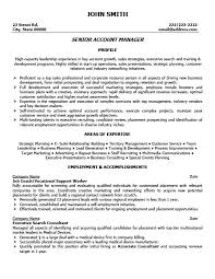 account manager resume exles senior account manager resume template premium resume sles