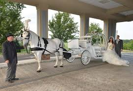 Table And Chair Hire For Weddings Dream Horse Carriage Company Unique Services Jackson Nj