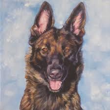 belgian shepherd tattoo belgian malinois dog portrait art canvas print of la shepard