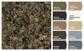 what color goes best with brown countertops colorsnap by sherwin williams brown granite countertops