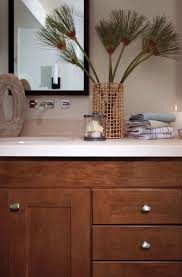 Builders Warehouse Bathroom Accessories by Bathroom Cabinets Builders Warehouse Interior Design For Home