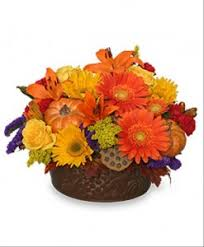 get your flowers today for thanksgiving in canada the florister