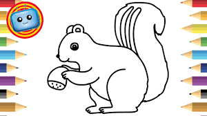 how to draw cute squirrel colouring book simple drawing game