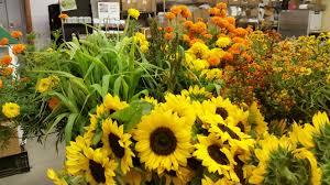 fresh cut flowers fresh cut flower farm up the gardener s workshop