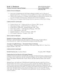 Executive Summary Example For Resume by Download Cad Engineer Sample Resume Haadyaooverbayresort Com
