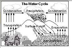 Water Cycle Worksheet Pdf 6th Grade The Water Cycle Ms Sylvester S Science Page