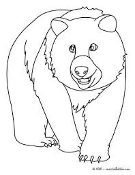 100 best wild animals coloring pages images on pinterest animal