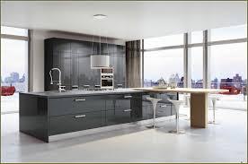 Kitchen Cabinets Brooklyn by Italian Kitchen Cabinets Brooklyn Ny Home Design Ideas