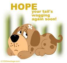 feel better cards you get back the wag soon free get well ecards greeting