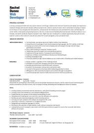 Developer Resume Sample by Download Web Design Resume Haadyaooverbayresort Com