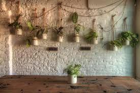 plant wall hangers indoor yoga 101 sian pascale