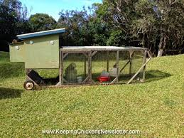 Chicken In Backyard Raising Chickens Keeping Chickens In Your Backyard