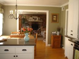 Kitchen Cabinets Green Kitchen Style Green Kitchens Color Countertops Cabinets Green