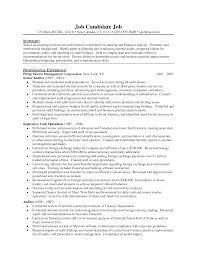Professional Profile Resume Examples Professional Profile Resume Examples Accounting