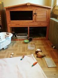 Indoor Hutch Do Attractive Spacious Indoor Rabbit Cages Exist Binkybunny