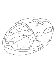 nevada state flag coloring page alabama state nut pecan download free alabama state nut pecan