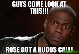 Meme Guys - guys come look at this rose got a kudos call meme kevin hart
