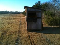 watch out for the bull deer hunting out of a box blind