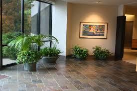 Interior Design For Home Lobby Portfolio Creative Plant Designs