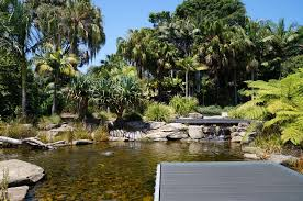 Mt Annan Botanical Garden The Playground At The Australian Botanic Garden Mt Annan Great