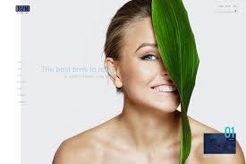 home hair salon decorating ideas 20 beautiful spa u0026 beauty salon wordpress themes 2017 colorlib