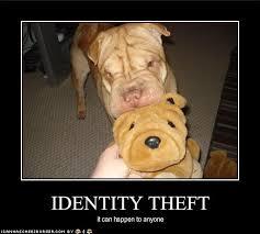 Identity Theft Meme - identity theft cute identity theft pinterest