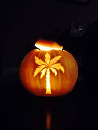 palm tree carved white pumpkin i learned something new