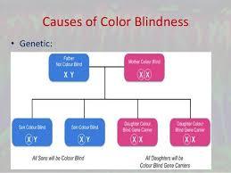 Color Blind Men Color Vision Deficiency And Ishihara U0027s Test