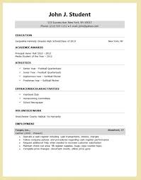 resume format for college application resumes professional summary exles